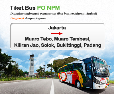 Newly launched NPM Bus tickets